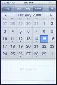 iPhone Calendar Month View