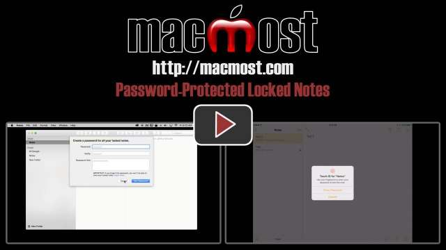 Password-Protected Locked Notes