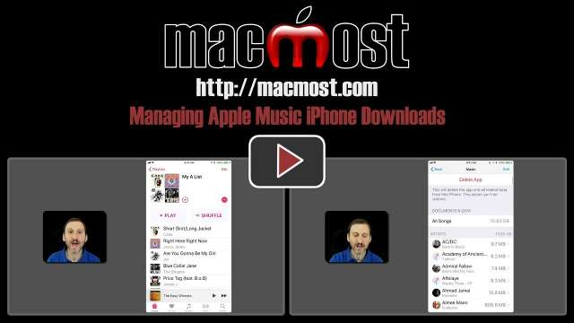 Managing Apple Music iPhone Downloads
