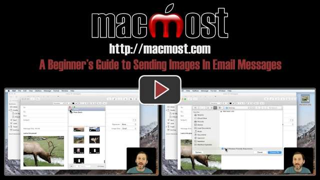 A Beginner's Guide to Sending Images In Email Messages